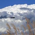 B737 ANA 大きな雲