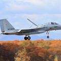 F-15J 866 203sq approach