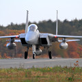 写真: F-15 紅葉を背景にtaxiing (2)