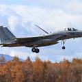Photos: F-15J 832 201sq 樽前山には雪の痕