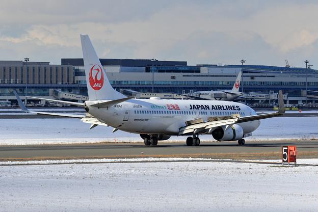 B737 JAL さあ,でかけよう北海道 JA306J