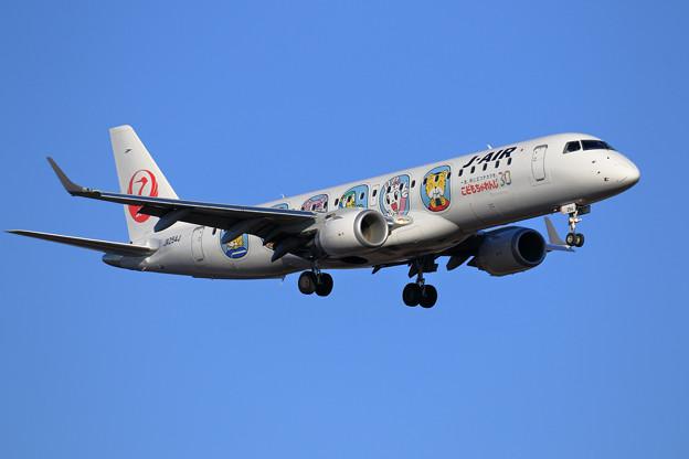 ERJ-190STD JALしまじろうジェット JA254J approach