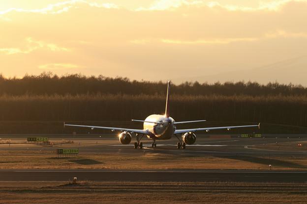 A320 APJ 夕陽に照らされて