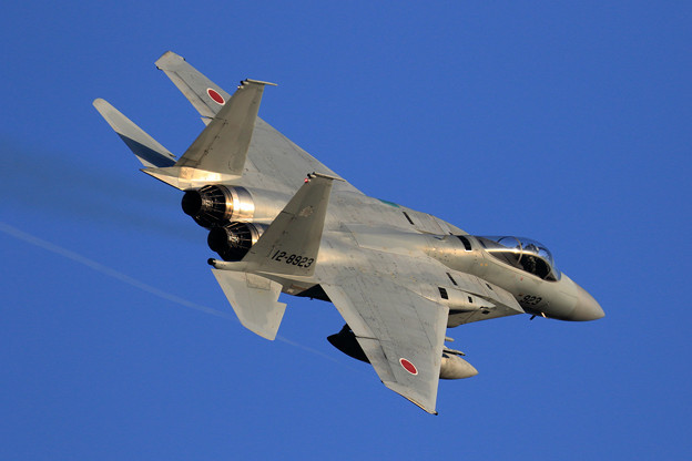 F-15J 923 304sq right turn