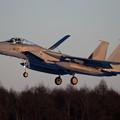 Photos: F-15J 917 304sq 3rdの終了