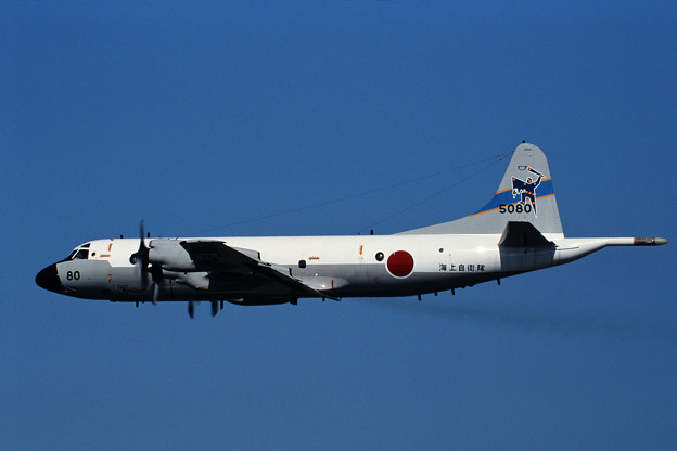 P-3C JMSDF 5080 VP-6 1998.08