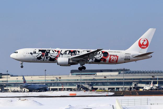 B767 JAL DREAM EXPRESS 90 JA602J landing