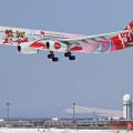 Photos: A330 Thai AirAsiaX HS-XTD landing