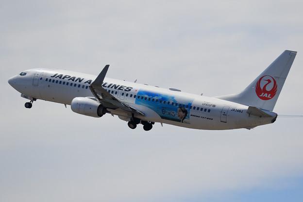 Photos: Boeing737 JAL なつぞら JA346J takeoff