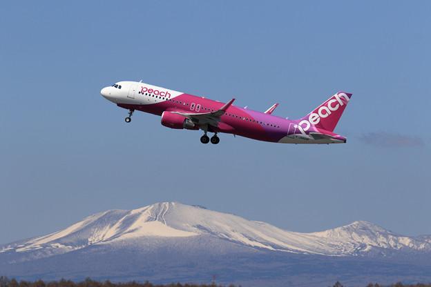 Photos: A320 Peach JA824P takeoff