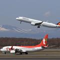 Photos: A321neo PAL RP-C9936とBoeing737 TWB HL8306