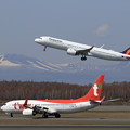 A321neo PAL RP-C9936とBoeing737 TWB HL8306