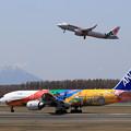 Photos: Boeing777 ANA JA741A landing roll