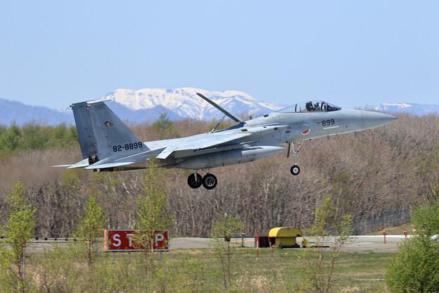 F-15J 芽吹きのころ