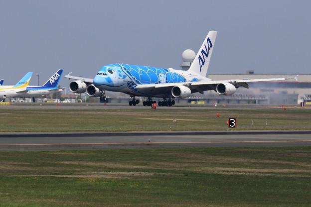 A380 ANA JA381Aが初飛来 (1)