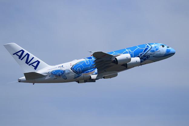 Photos: A380 ANA JA381A takeoff
