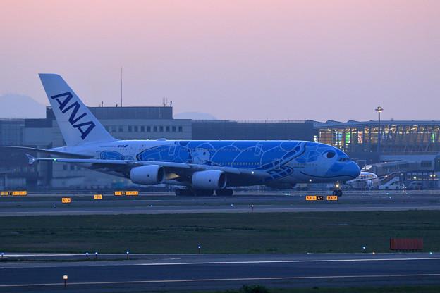A380 ANA spot out (2)