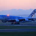 Photos: A380 ANA JA381A takeoff (1)