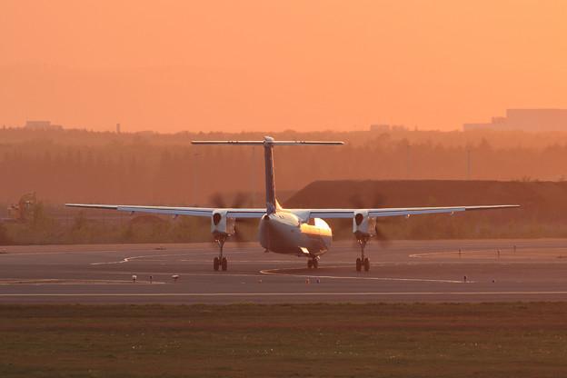 Q400 ANA wings 夕陽に照らされて