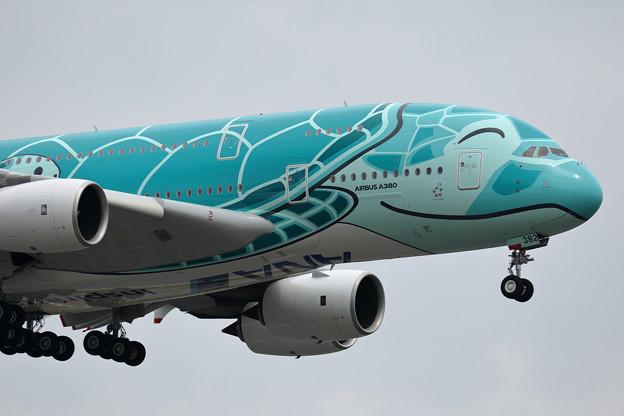 A380 ANA JA382A 飛来 (2)