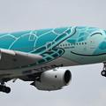 Photos: A380 ANA JA382A 飛来 (2)