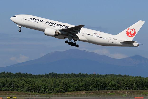 Boeing777 JAL JA009D takeoff