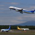 B777 ANA JA742A takeoff