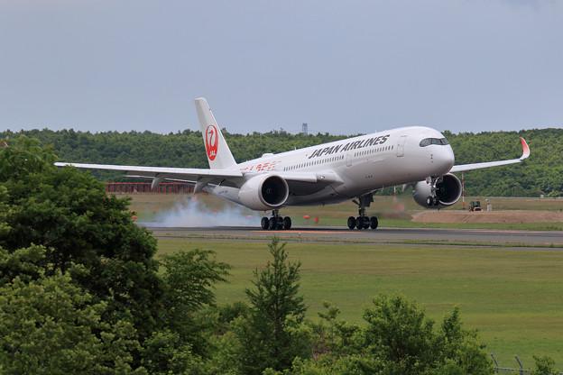 A350-900 JAL JA01XJ 慣熟飛行で飛来 (1)