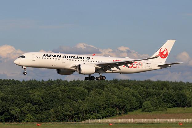 A350-900 JAL JA01XJ 慣熟飛行で飛来 (4)