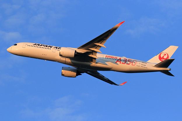 A350-900 JAL JA01XJ 慣熟飛行で飛来 (5)