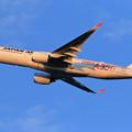 Photos: A350-900 JAL JA01XJ 慣熟飛行で飛来 (5)