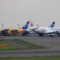 Photos: A350 JALとB777 ANA