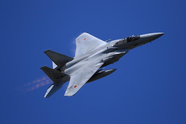 F-15J 2019機動予行 203sq (1)