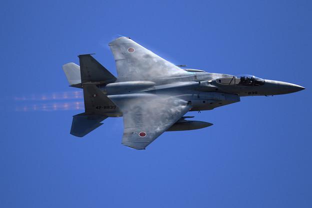 F-15J 2019機動予行 203sq (2)
