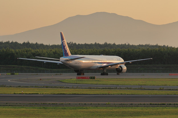 Boeing777 ANA 夕陽を映す