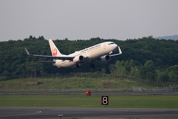 Boeing737 JAL Rwy19L takeoff