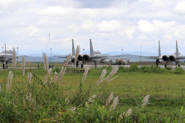 F-15 201sq 初秋