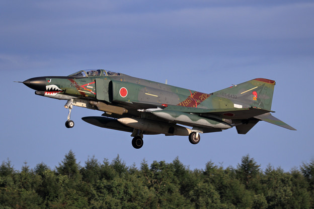 RF-4EJ 433 501sq 飛来 (4)