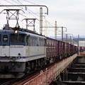 5087レ【EF65 2050牽引】