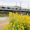 Photos: 和歌山線 221系