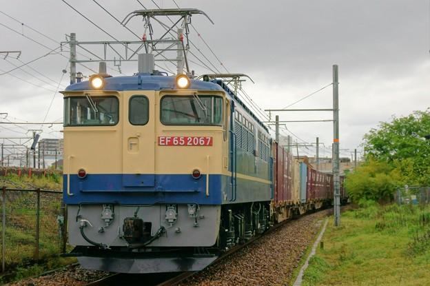 写真: 72レ【EF65 2067牽引】