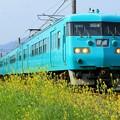 写真: 和歌山線 117系