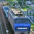Photos: 配6866レ【EF200-2牽引】
