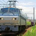 Photos: 5074レ【EF66 101牽引】