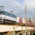 Photos: 84レ【EF65 2060牽引】