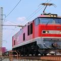 写真: 83レ【EF510-1牽引】