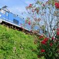 Photos: 配1392レ【EF510-502】