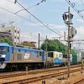 Photos: 1055レ【EF210-1牽引】