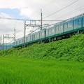Photos: 近鉄田原本線 ダークグリーン