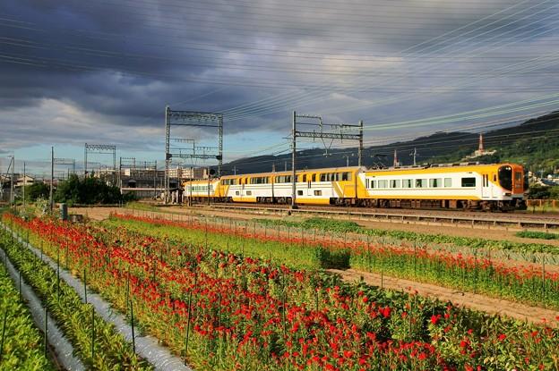 近鉄大阪線
